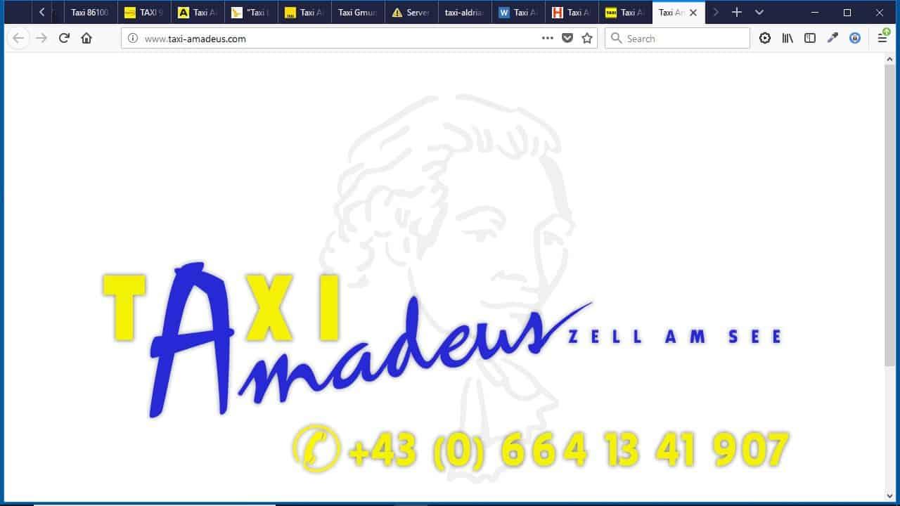"""""""Taxi Amadeus"""" Höllbacher KEG"""